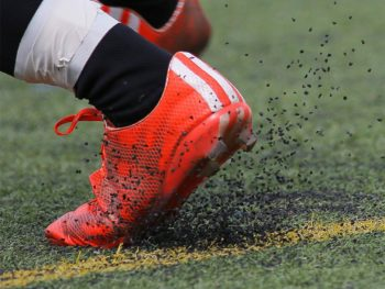 Artificial Turf showing Rubber Crumb Infill plastic